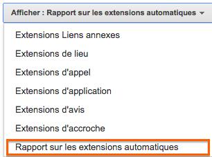 Rapport Extensions Automatiques