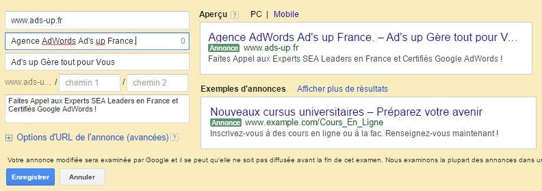Visualisation_Adwords_Tronqué1