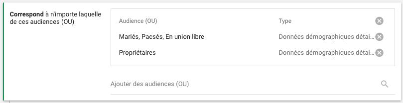 Données démographiques - Audiences combinées Google Ads